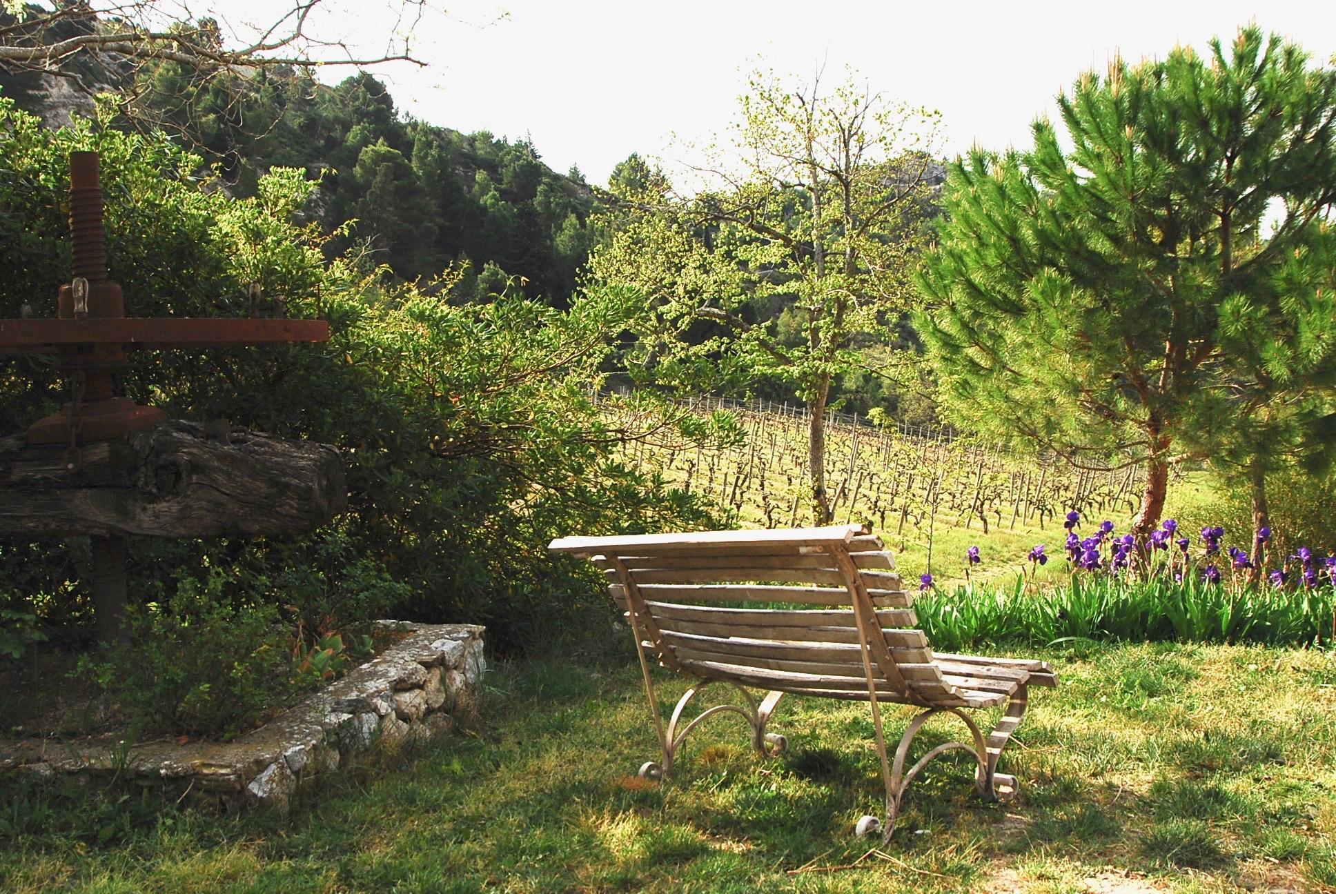 Les vins du Domaine de Cantaussel, l'expression d'un terroir d'exception
