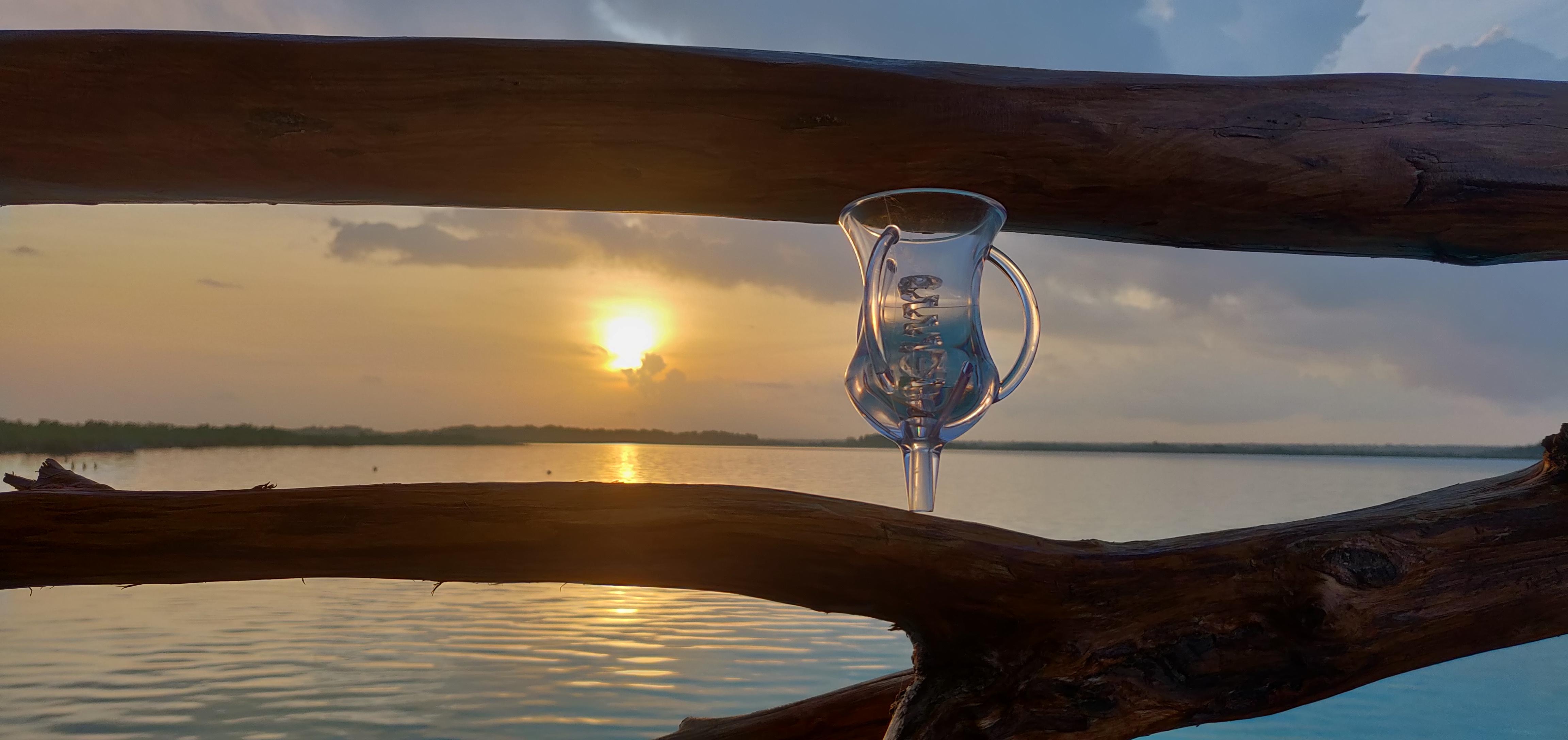 VINITEM : le révélateur d'arômes pour une dégustation de vin réussie