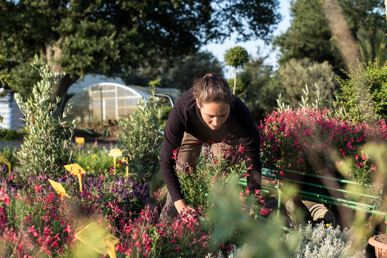 AGRI-INTERIM : Recrutez plus facilement, dans le domaine du paysage