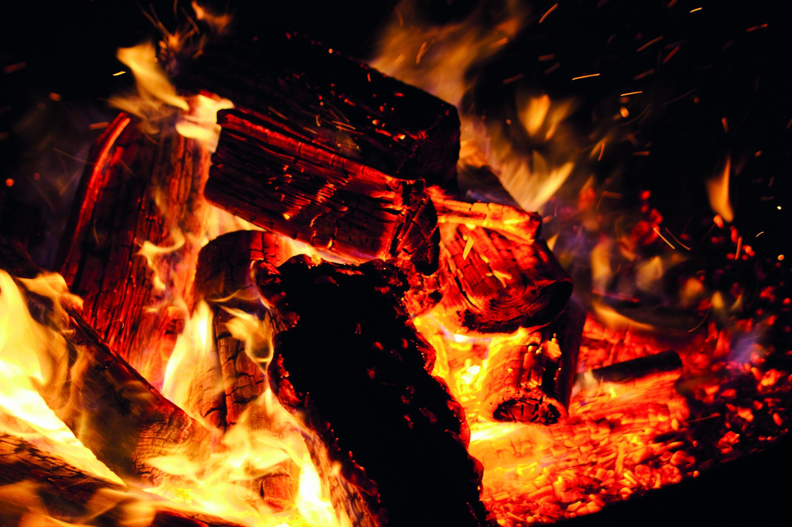 Le bois, parfait pour se chauffer et cuisiner
