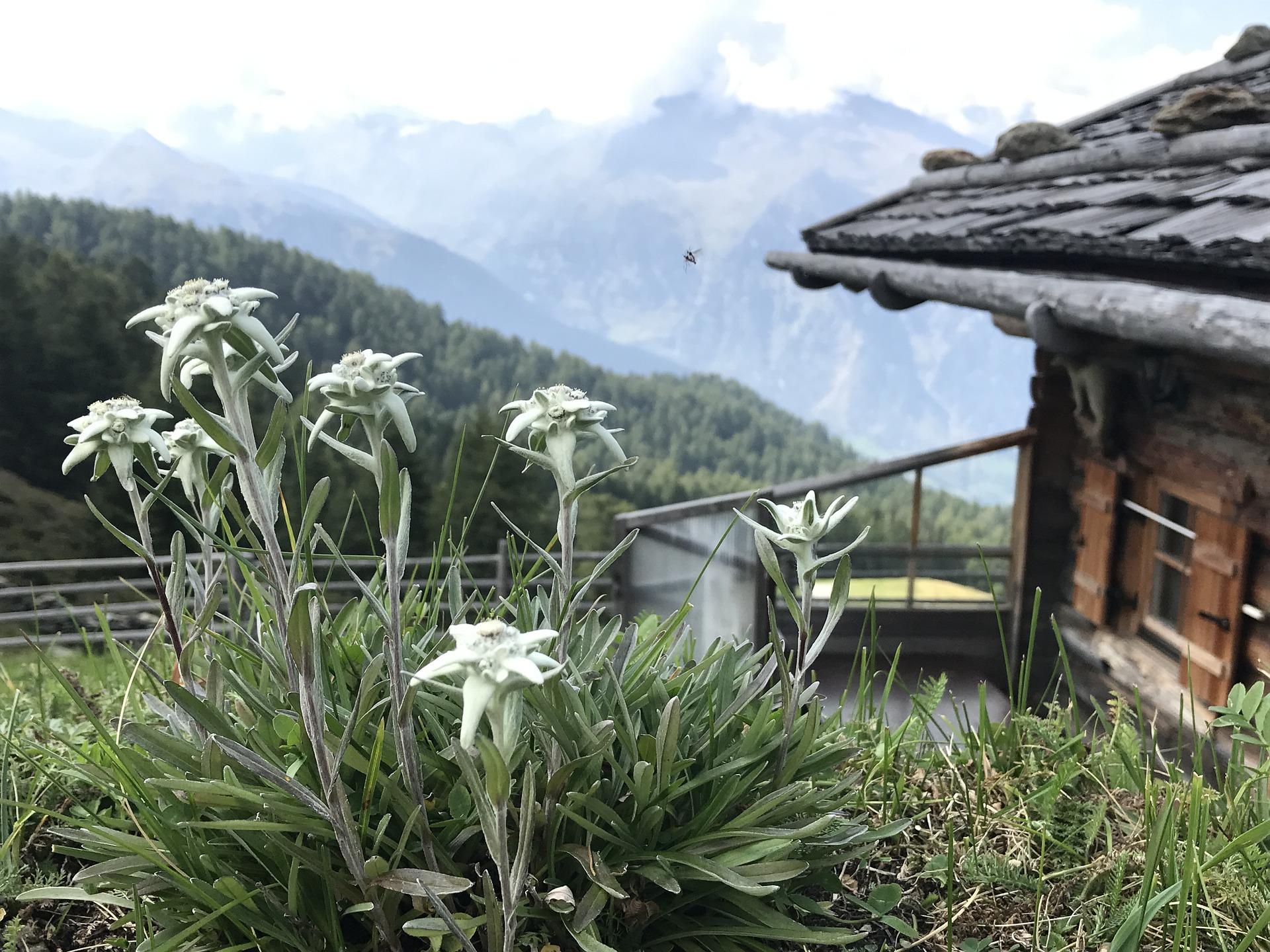 Paysalia – Des jardins inspirés & inspirants