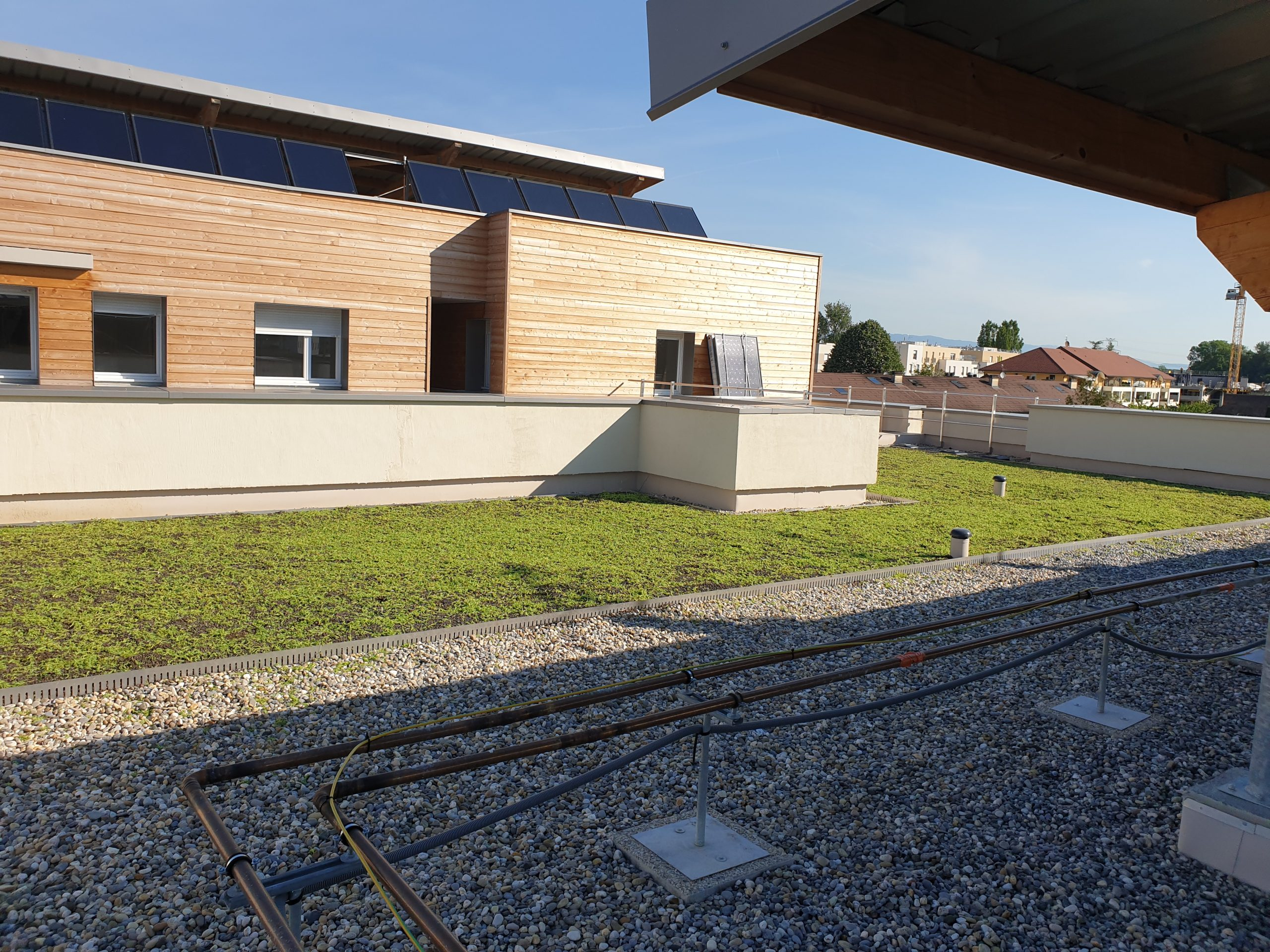 Le toit végétal, plus de fraîcheur et d'économies d'énergies