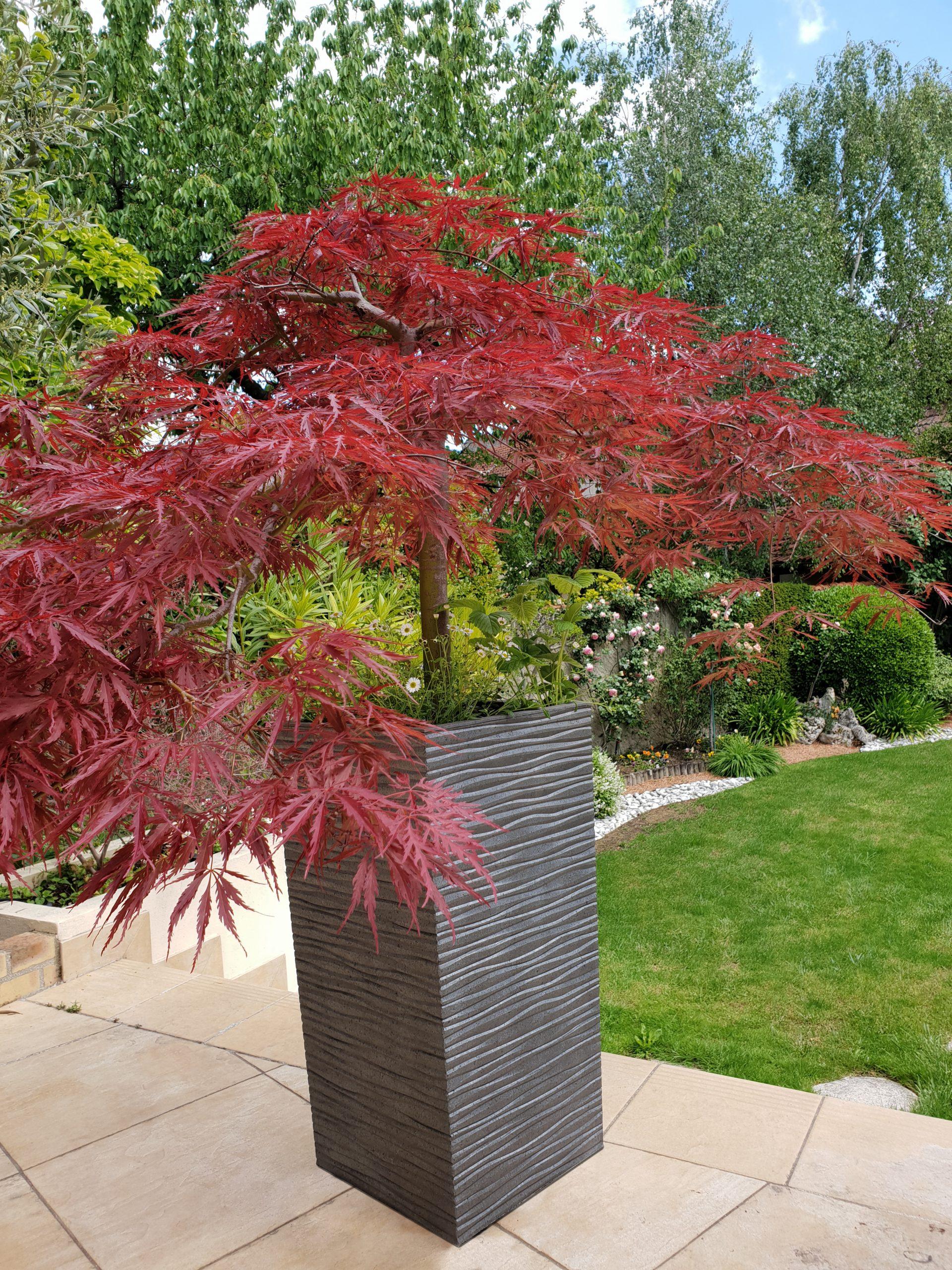Ribimex, des contenants design pour fleurs, plantes et arbustes