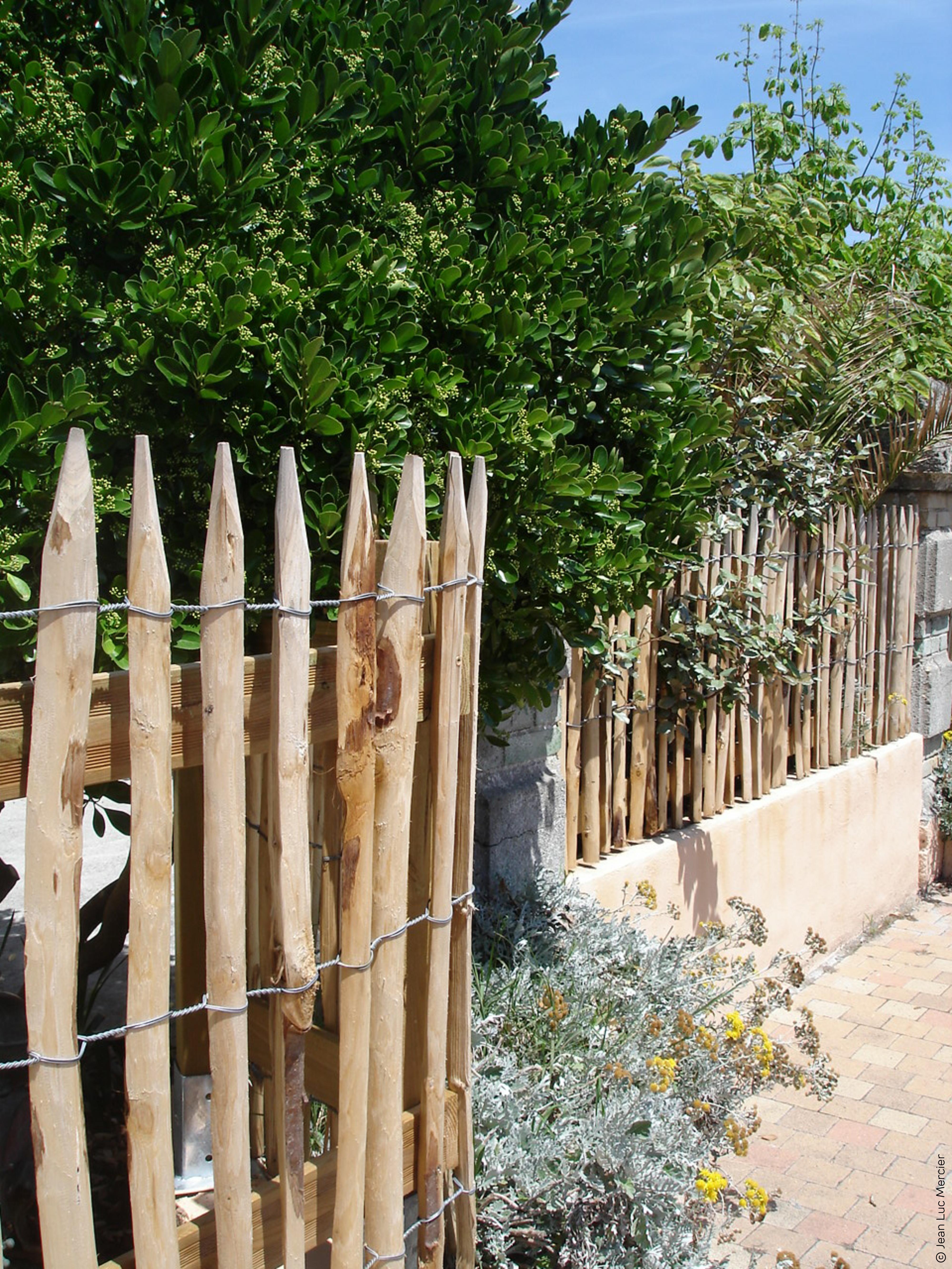Des principes naturels au service de vos plantes, de votre jardin