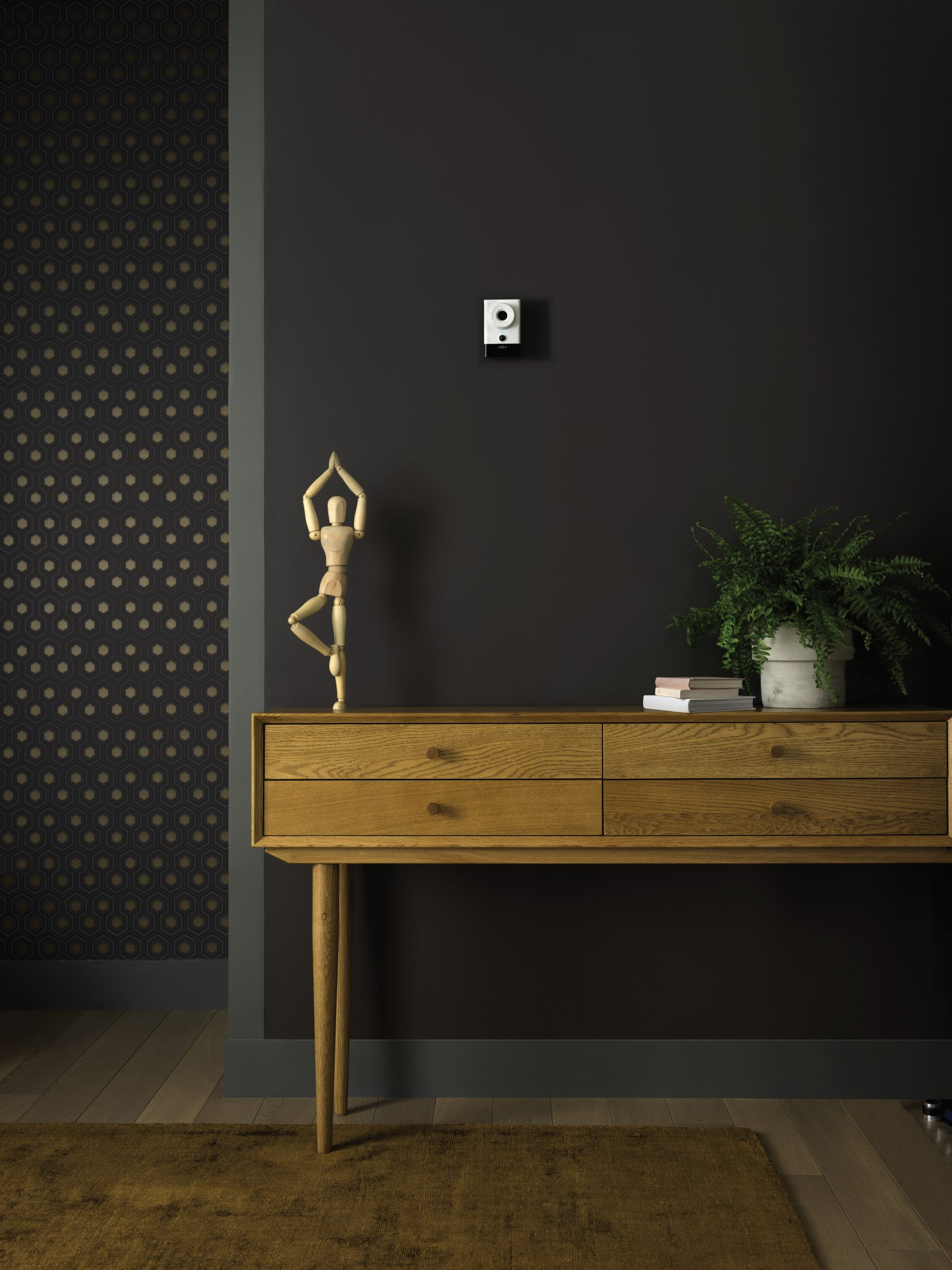 Diagral : Veillez sereinement sur vos proches et votre foyer avec des caméras connectées